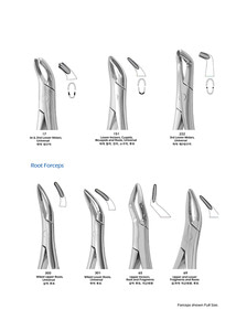 (youngdent) Extracting Forceps / Root Forceps (103)
