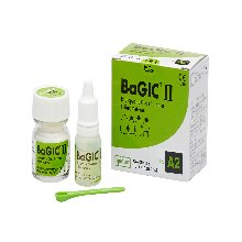 (spident) BaGIC2(15g powder,8ml Liquid)